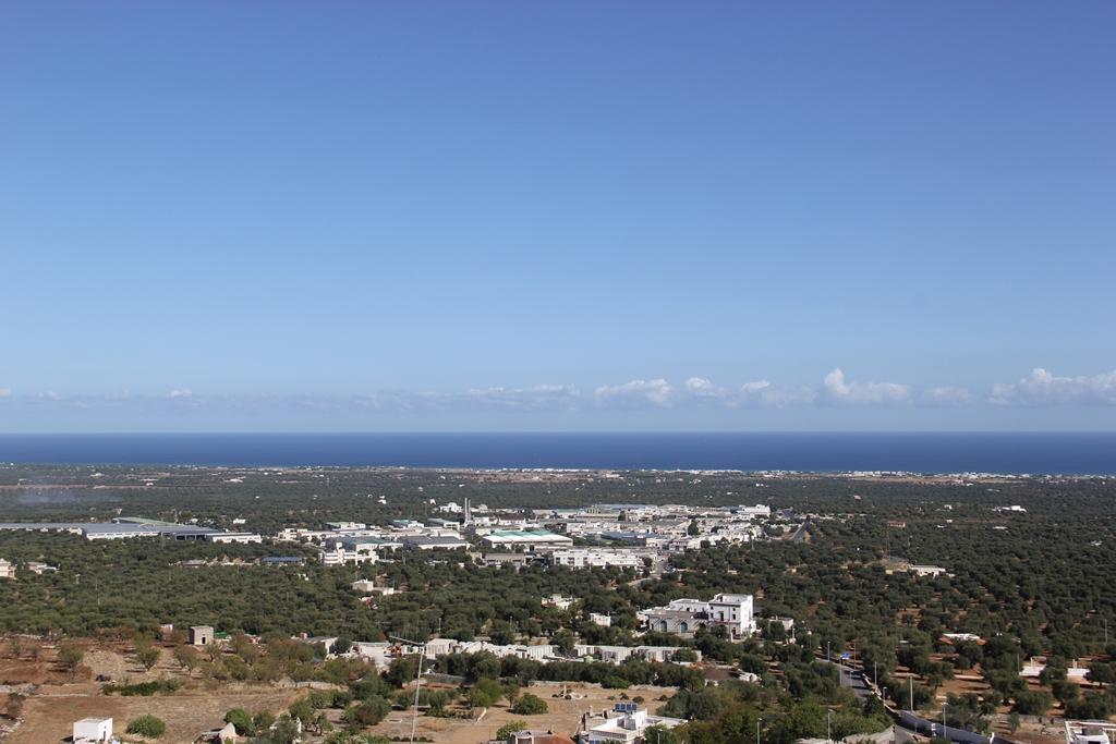 Vista do mirante de Ostuni. As árvores abaixo são oliveiras, Foto: André Schetino