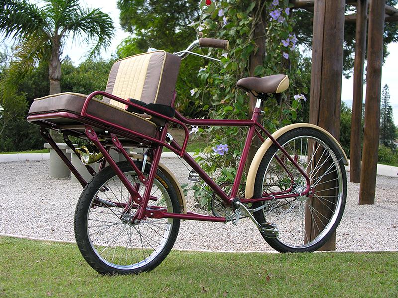 Bike Carruagem Alice