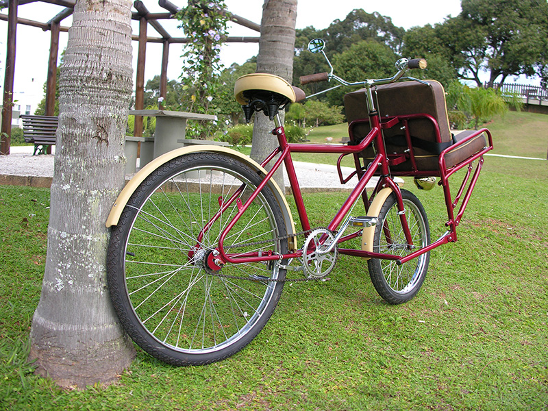 Bike Carruagem Alice