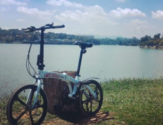 Review bicicleta dobrável Two Dogs Pliage Alloy