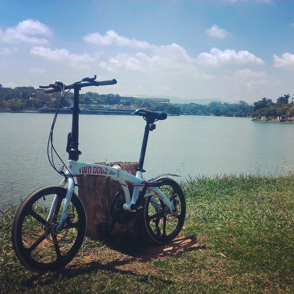 review bicicleta dobrável two dogs pliage alloy
