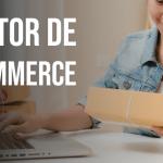 Gestor de E-commerce: Qual o papel desse profissional