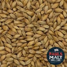 Malte CaraMalt - Pauls Malt - 100g