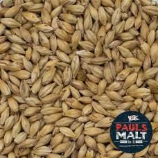Malte Melanoidin Pauls Malt - 100g