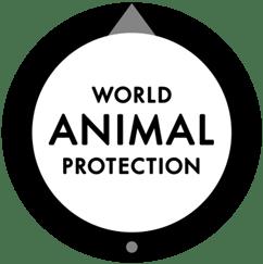 World Animal Protaction