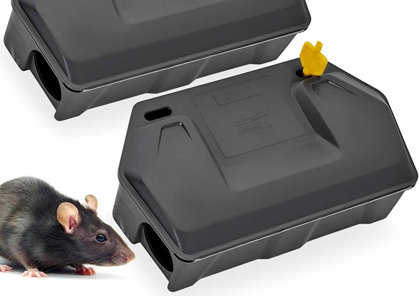 Iscas para Ratos