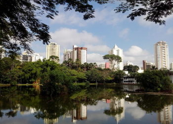 https://upload.wikimedia.org/wikipedia/commons/1/1a/Parque_buritins._goiania.jpg