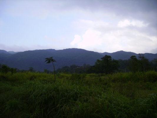 turismo-jamaica-passeios
