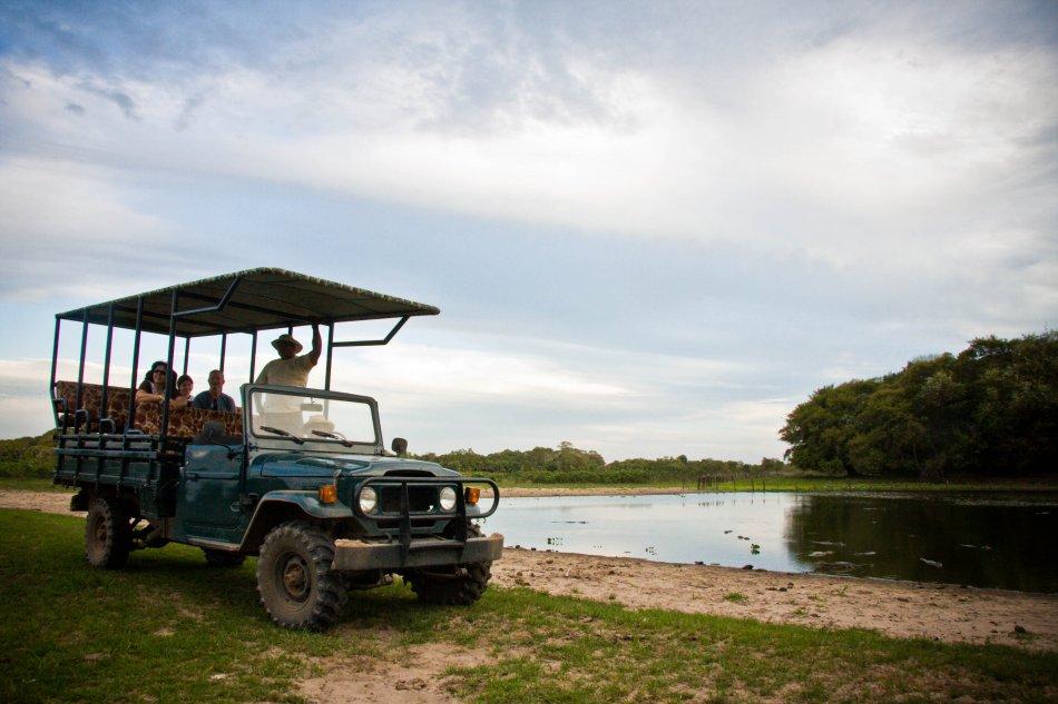 viagem-pantanal-dicas-blog-de-viagens