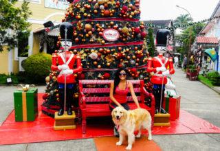 Visconde de Mauá + Penedo com cachorro- Dicas Pet Friendly