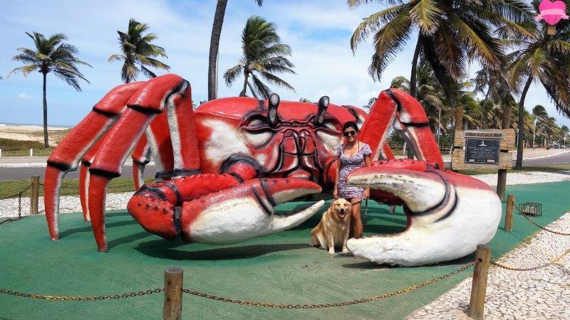 caranguejo-praia-atalaia-orla-aracaju-sergipe-viagem-cachorro-dicas-pet-friendly