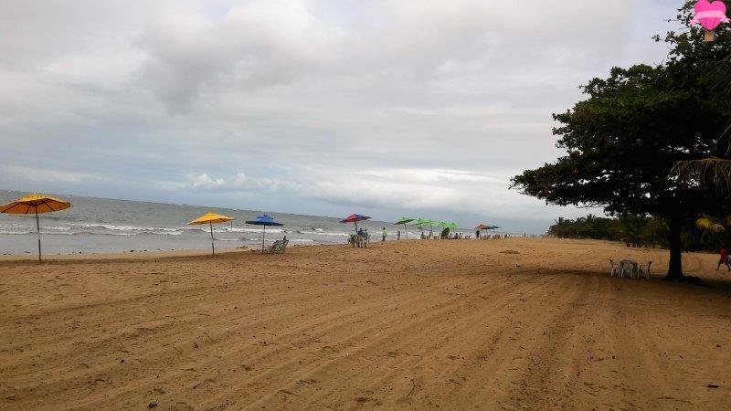 praia-pajuçara-alagoas-maceio-road-trip-cachorro-pet-friendly