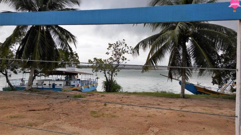 praia-gunga-alagoas-maceio-road-trip-cachorro-pet-friendly