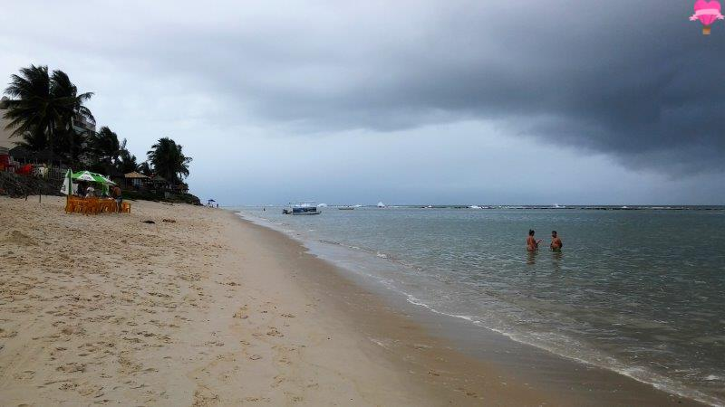 praia-niquim-maceio-alagoas-nordeste-road-trip-pet-friendly-viagem-cachorro
