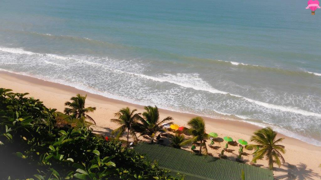 praia,pipa,natal,rio-grande-do-norte,nordeste,praia,madeiro,cachorro,pet,friendly,viagem,turismo,4,patas