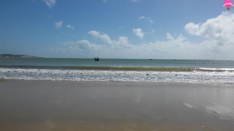 praia-ponta-negra-natal-rio-grande-norte-cachorro-pet-friendly