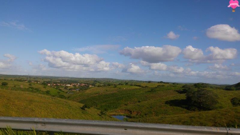 estrada-aracaju-maceio-alagoas-nordeste-viagem-road-trip
