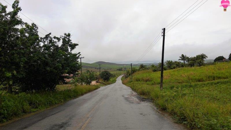 road-trip-estrada-alagoas-maragogi-maceio-viagem-cachorro
