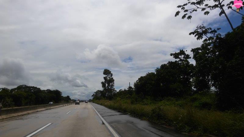 estrada-alagoas-pernambuco-recife-road-trip