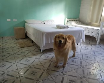 pousada-socorro-pet-friendly-sp