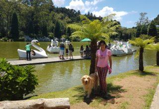 Dicas de passeios para fazer em Gramado e Canela com cachorro
