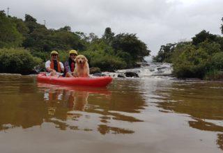 Aventura Pet friendly: Passeio de caiaque com cachorro em Socorro/São Paulo