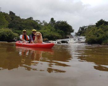 viagem-pet-friendly-cachorro-golden-retriever-caiaque-kaiak-socorro-sao-paulo