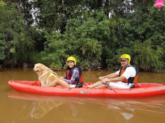 caiaque-kaiak-cachorro-pet-friendly-socorro-sao-paulo-aventura-golden-retriever-dicas-viagem-roteiros-4-patas