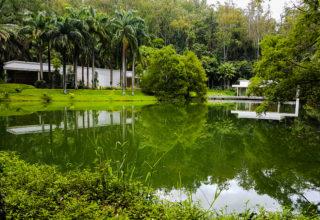 Dicas das principais atrações para visitar no Instituto Inhotim em Brumadinho