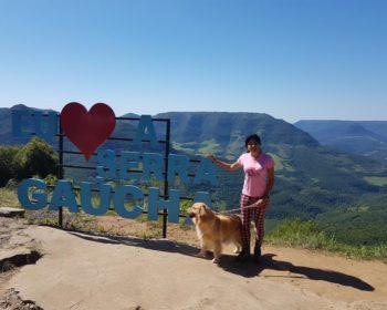 road-trip-sul-cachorro-brasil