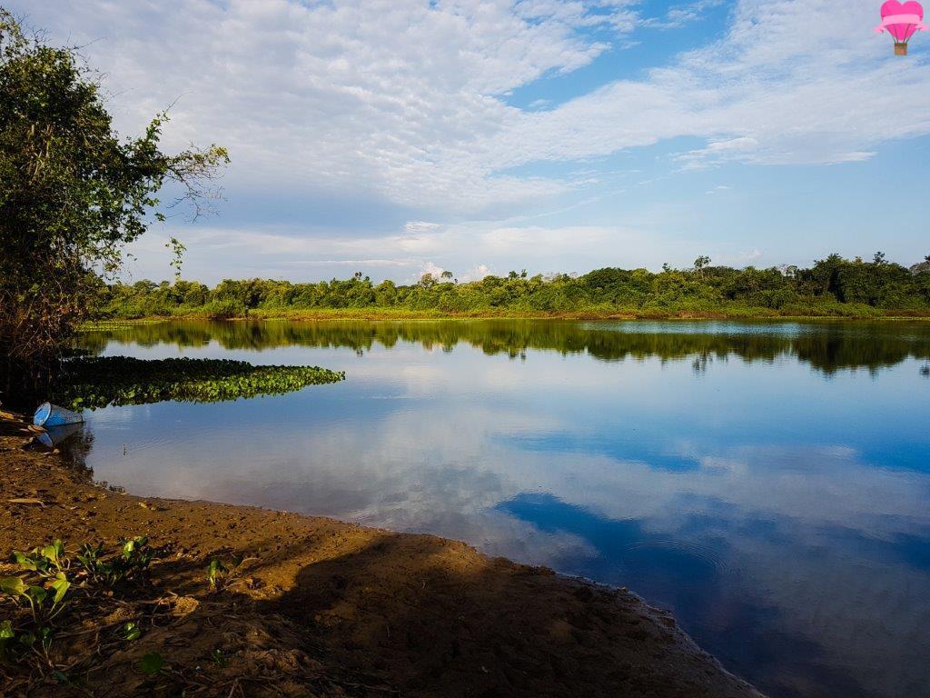 pesca-piranhas-pantanal-ms-brasil