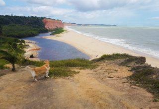 Viagem com cachorro: Roteiro 3 dias em Prado, Cumuruxatiba e Alcobaça (BA)