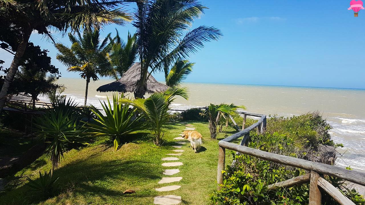 praia-tororao-prado-bahia-cachorro-petfriendly