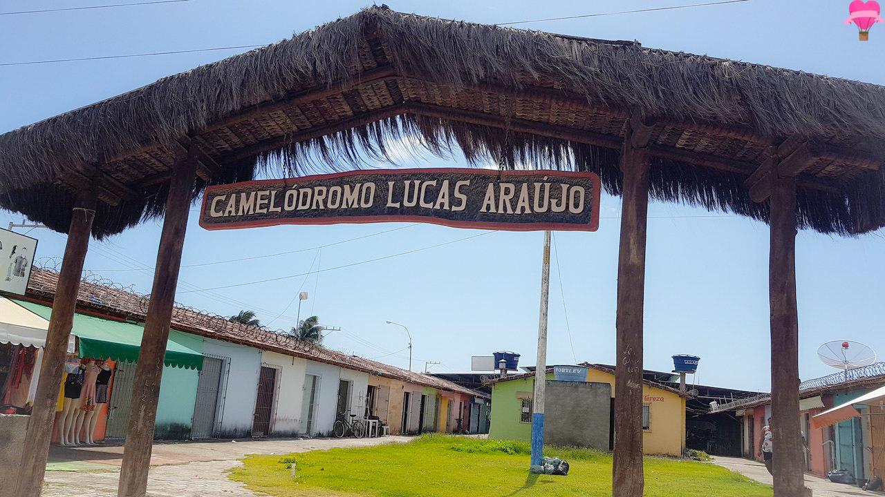camelodromo-lucas-araujo-prado-bahia