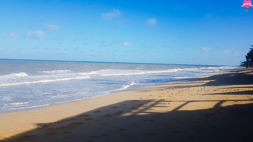 praia-novo-prado-bahia-cachorro