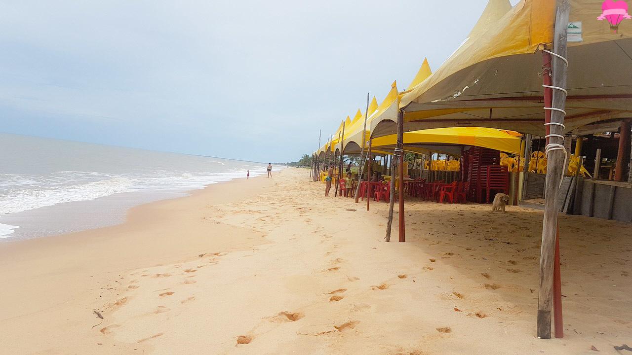 praias-prado-bahia-farol-cachorro-pet-friendly