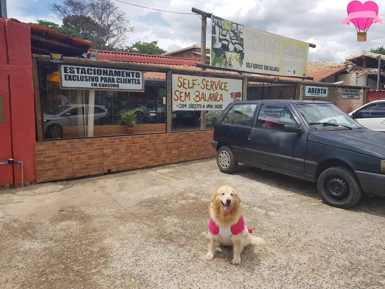 restaurante-serra-cipo-pet-friendly