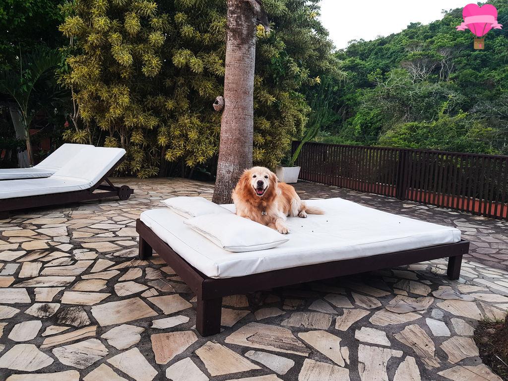 buzios-pet-friendly-hospedagem