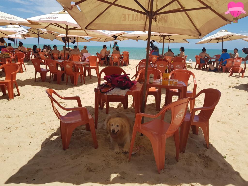 barraca-gaucho-porto-seguro-pet-friendly
