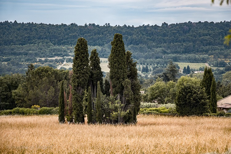 Le Mas de Guilles - Lourmarin © Imagina na Viagem