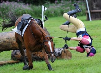 cair do cavalo em inglês