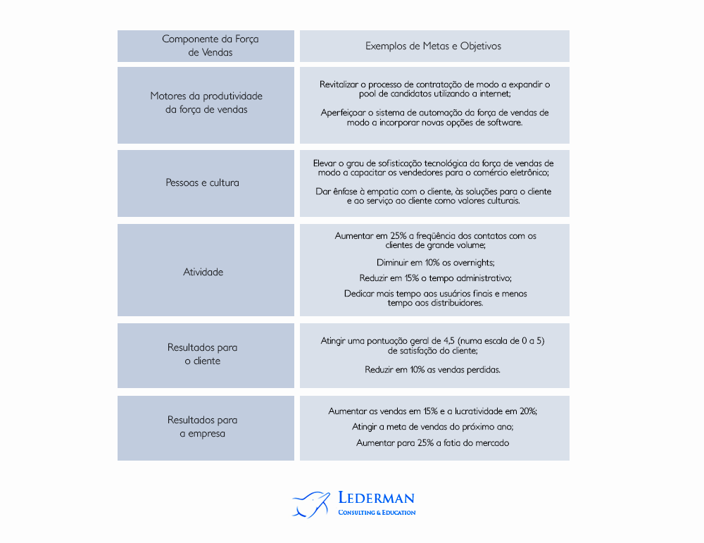 Passo 2: estratégia da Força de Vendas