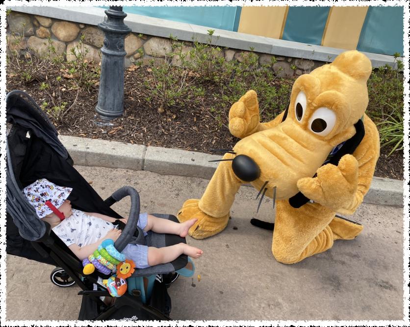 todos na Disney se agacham para falar com as crianças