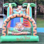 aluguel-de-brinquedos-toboga-tigrinho
