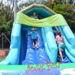 festa-infantil-toboga-floresta