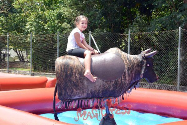 festas-infantis-touro-mecanico