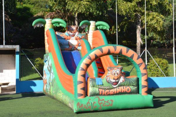 locacao-de-toboga-tigrinho