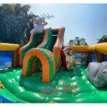 aniversario-de-criança-multiplay-safari-2