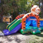 festas-infantis-kid-tigre
