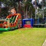 tobogã-tigrão-para-eventos